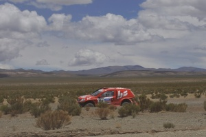steppe stage 7